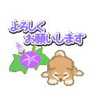 小豆柴の夏(個別スタンプ:22)