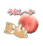 小豆柴の夏(個別スタンプ:36)
