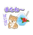 小豆柴の夏(個別スタンプ:39)
