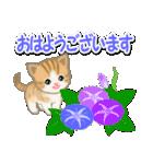 ちび猫の夏(個別スタンプ:1)