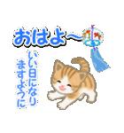 ちび猫の夏(個別スタンプ:2)