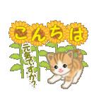 ちび猫の夏(個別スタンプ:3)
