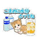 ちび猫の夏(個別スタンプ:9)
