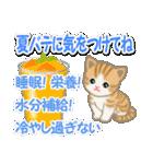 ちび猫の夏(個別スタンプ:10)