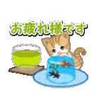 ちび猫の夏(個別スタンプ:17)