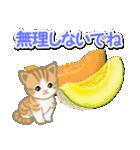 ちび猫の夏(個別スタンプ:19)