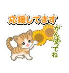 ちび猫の夏(個別スタンプ:26)