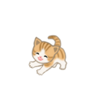 写真に貼れるちび猫【言葉なし】(個別スタンプ:3)
