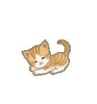 写真に貼れるちび猫【言葉なし】(個別スタンプ:15)