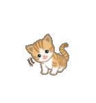 写真に貼れるちび猫【言葉なし】(個別スタンプ:16)