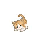 写真に貼れるちび猫【言葉なし】(個別スタンプ:18)