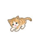 写真に貼れるちび猫【言葉なし】(個別スタンプ:19)