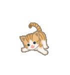 写真に貼れるちび猫【言葉なし】(個別スタンプ:20)