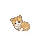 写真に貼れるちび猫【言葉なし】(個別スタンプ:38)