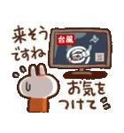 毎日便利【夏】白うさぎさん時々インコ(個別スタンプ:33)