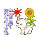 夏~秋 もこもこ猫ちゃんズ(個別スタンプ:2)