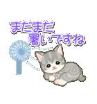 夏~秋 もこもこ猫ちゃんズ(個別スタンプ:5)