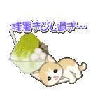 夏~秋 もこもこ猫ちゃんズ(個別スタンプ:6)
