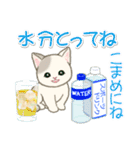 夏~秋 もこもこ猫ちゃんズ(個別スタンプ:8)