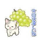 夏~秋 もこもこ猫ちゃんズ(個別スタンプ:11)