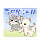 夏~秋 もこもこ猫ちゃんズ(個別スタンプ:13)