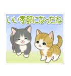 夏~秋 もこもこ猫ちゃんズ(個別スタンプ:14)