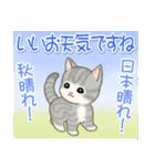 夏~秋 もこもこ猫ちゃんズ(個別スタンプ:15)