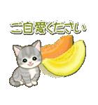 夏~秋 もこもこ猫ちゃんズ(個別スタンプ:20)