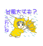夏~秋 もこもこ猫ちゃんズ(個別スタンプ:22)
