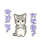 夏~秋 もこもこ猫ちゃんズ(個別スタンプ:26)