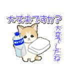 夏~秋 もこもこ猫ちゃんズ(個別スタンプ:27)