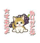 夏~秋 もこもこ猫ちゃんズ(個別スタンプ:28)