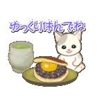 夏~秋 もこもこ猫ちゃんズ(個別スタンプ:30)