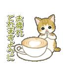 夏~秋 もこもこ猫ちゃんズ(個別スタンプ:31)
