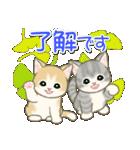 夏~秋 もこもこ猫ちゃんズ(個別スタンプ:33)