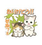 夏~秋 もこもこ猫ちゃんズ(個別スタンプ:34)