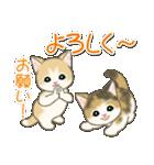 夏~秋 もこもこ猫ちゃんズ(個別スタンプ:35)