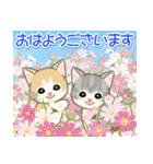 夏~秋 もこもこ猫ちゃんズ(個別スタンプ:37)