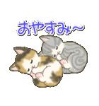 夏~秋 もこもこ猫ちゃんズ(個別スタンプ:38)