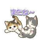 夏~秋 もこもこ猫ちゃんズ(個別スタンプ:39)