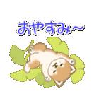 夏~秋 よちよち豆柴(個別スタンプ:38)