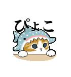 動く!サメにゃん(個別スタンプ:5)