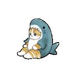 動く!サメにゃん(個別スタンプ:8)
