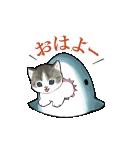 動く!サメにゃん(個別スタンプ:19)