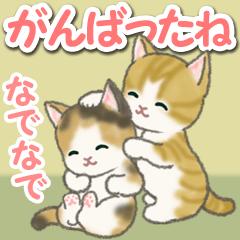 [LINEスタンプ] がんばったね もこもこ猫ちゃんズ