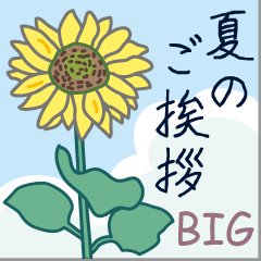 [LINEスタンプ] 夏のご挨拶【BIG】