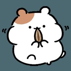 [LINEスタンプ] ぷにぷにハムずの毎日使えるスタンプ