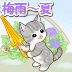 [LINEスタンプ] 梅雨~夏 もこもこ猫ちゃんズ