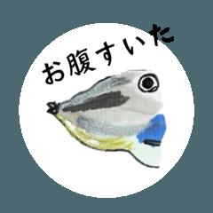 [LINEスタンプ] シュール お魚