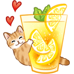 [LINEスタンプ] 夏☆猫たちのスタンプ
